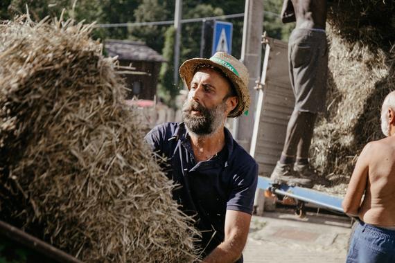 HUMUS - Job Sharing agricolo contro il caporalato