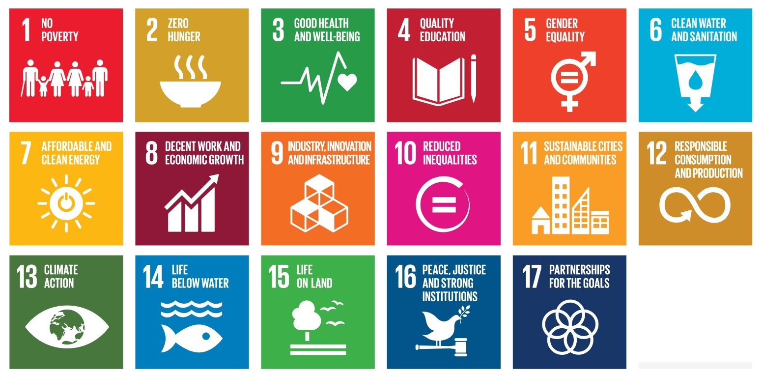 I 17 SDG dell'ONU